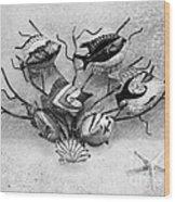 Black And White Fish 1  Wood Print