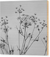 Black And White Floral Silhouettes Wood Print