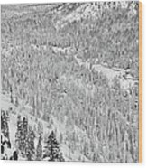 Black And White Lake Tahoe California Covered In Snow During The Winter Wood Print