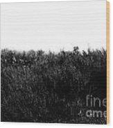 Black And White Magic V2 Wood Print