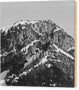 Black And White Mountain Range 1 Wood Print by Diane Rada