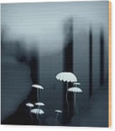 Black And White Mushrooms Wood Print