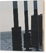 Black And White Poles On Water Wood Print