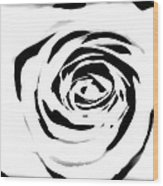 Black And White Rose Wood Print