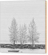 Black And White Square Tree  Wood Print