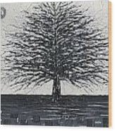 Black And White Snow Cold Winter Tree Wood Print
