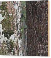 Black And White Tree Wood Print