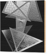 Black And White Triangles Wood Print by Mario Perez