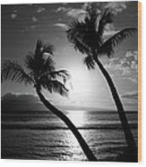 Black And White Tropical Wood Print