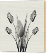 Black And White Tulips Drawing Wood Print