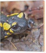 Black And Yellow Wood Print