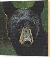 Black Bear Wood Print