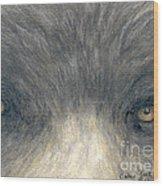 Black Bear Eyes Wildlife Animal Art Wood Print