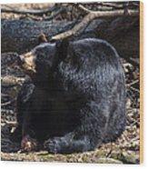 Black Bear Guarding Food Wood Print