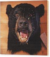 Black Bear Head Wood Print