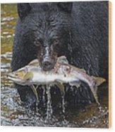 Black Bear With Salmon Wood Print