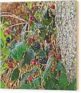 Black Berry Wood Print