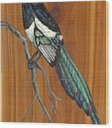 Black Billed Magpie Wood Print