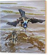 Black Bird On The Water Wood Print