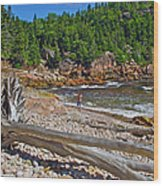 Black Brook In Cape Breton Highlands Np-ns Wood Print