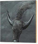 Black Buffalo Wood Print