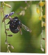 Black Bumblebee Wood Print