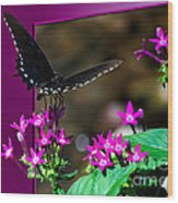 Black Butterfly 06 Wood Print