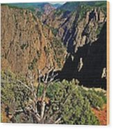 Black Canyon Wood Print