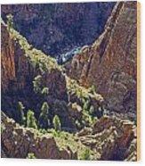 Black Canyon Of The Gunnison Wood Print