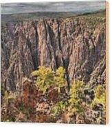 Black Canyon Spires Wood Print