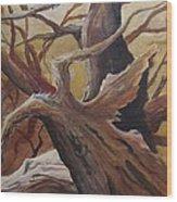Black Cap Chickadee Wood Print