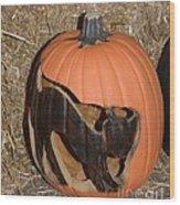 Black Cat On Pumpkin Wood Print