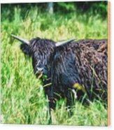 Black Cow Wood Print