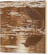 Black-crowned Night Heron Sunset Wood Print