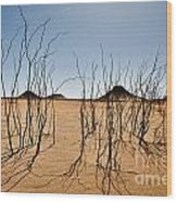 Black Desert Wood Print