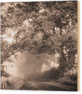 Black Dog On A Misty Road. Misty Roads Of Scotland Wood Print