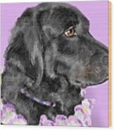 Black Dog Pretty In Lavender Wood Print