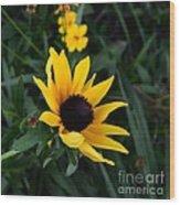 Black-eyed Susan Glows With Cheer Wood Print
