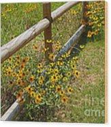 Black Eyed Susans In A Wildflower Meadow Wood Print