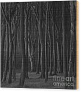 Black Forest Wood Print