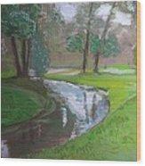 Black Hancza River Wood Print
