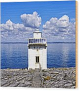 Black Head Lighthouse Wood Print