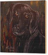 Black Lab II Wood Print