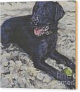 Black Lab On The Beach Wood Print