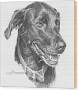 Black Lab Pencil Portrait Wood Print