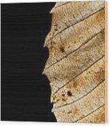 Black Leaf Wood Print