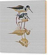 Black Neck Stilts Togeather Wood Print