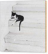 Black On White 2 Wood Print