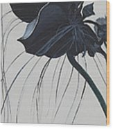 Black Orchid Wood Print