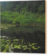 Black Pond Wood Print
